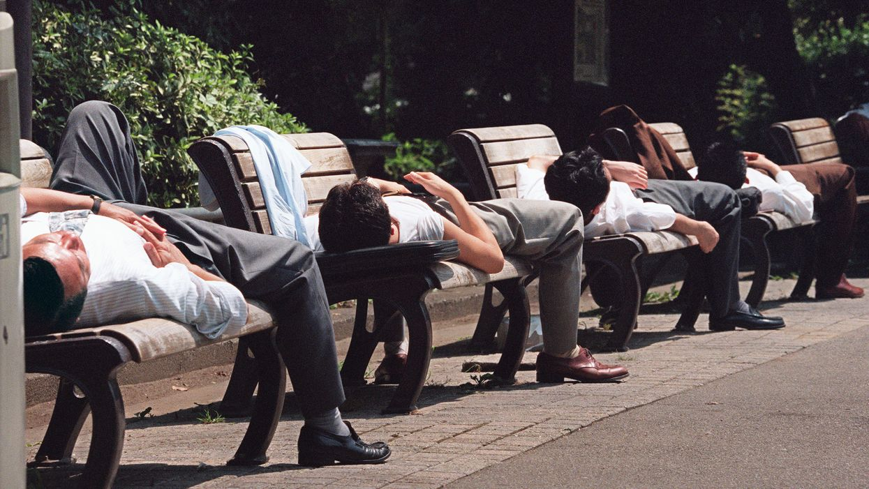 Taking a nap sharpens your brain, suggests new science