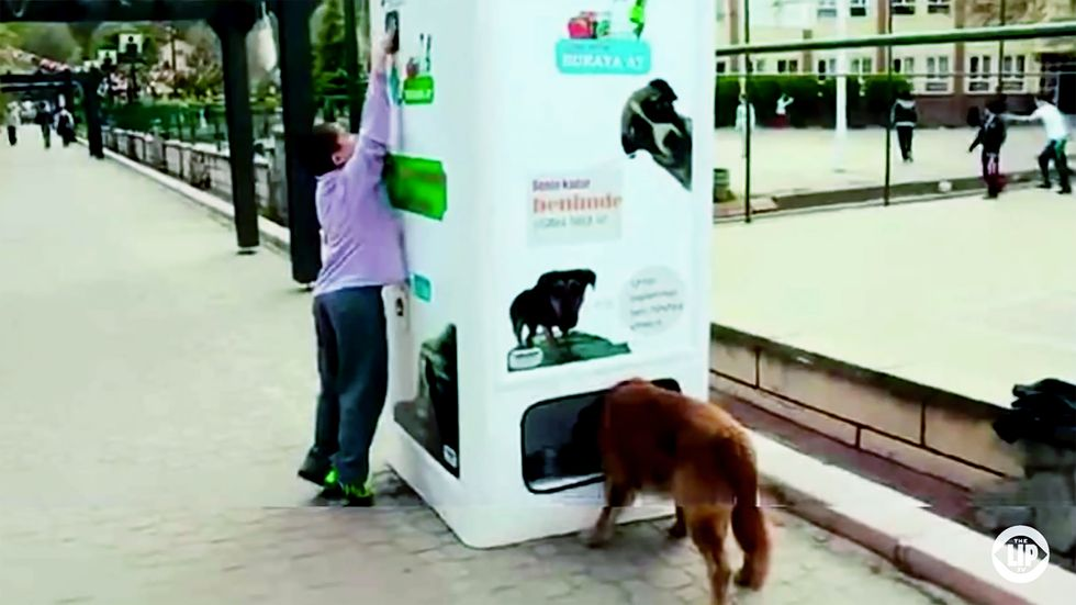 Bin Transforms Recycled Bottles into Food for Animals We Love