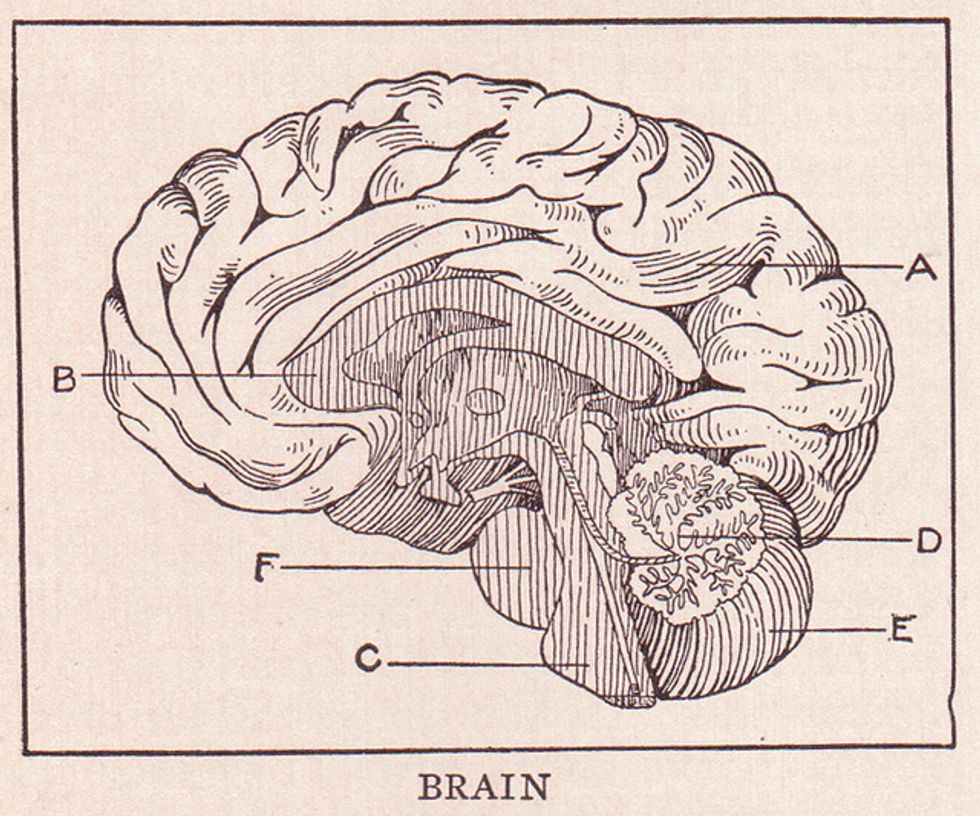 The Floating Brain: Learning in the 21st Century