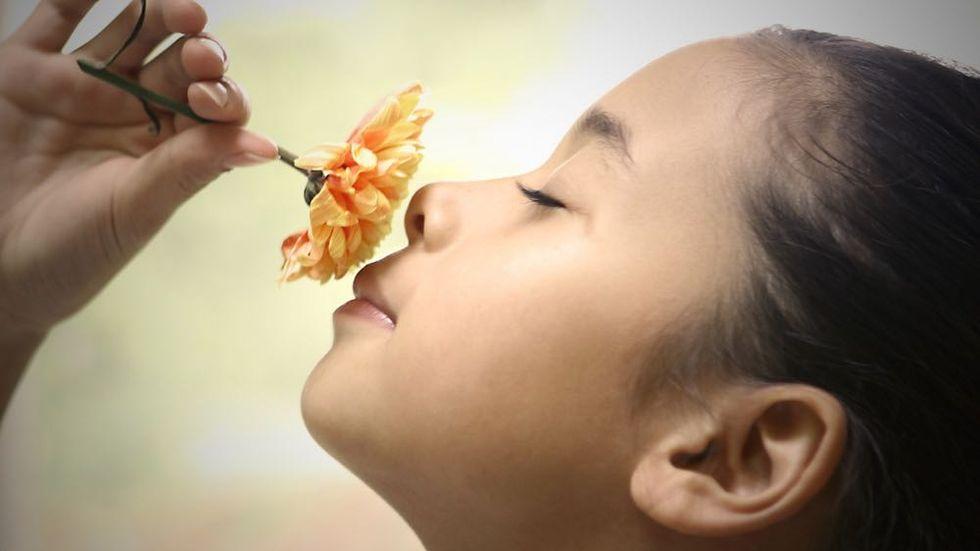 Humans Really Have Seven Senses (Don't Forget Proprioception and Vestibular Sensation)