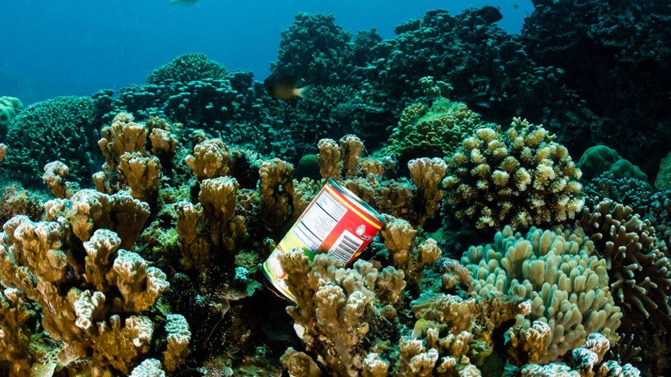 Aquarium Exhibit Explores How Marine Debris Can Produce Clean Energy