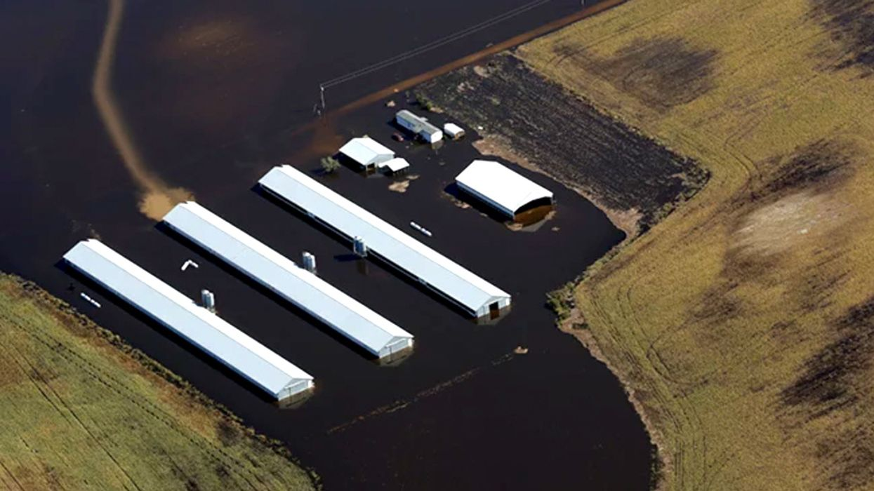 Will Hurricane Florence Flood North Carolina Factory Farms and Manure Pits?