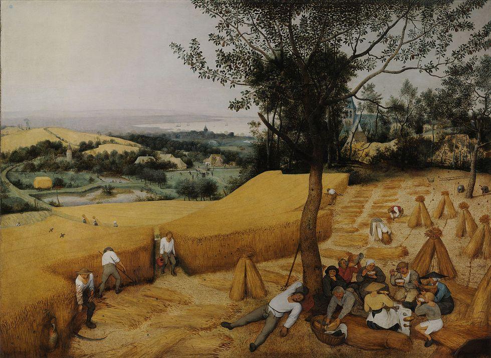 The Harvesters. Pieter Bruegel