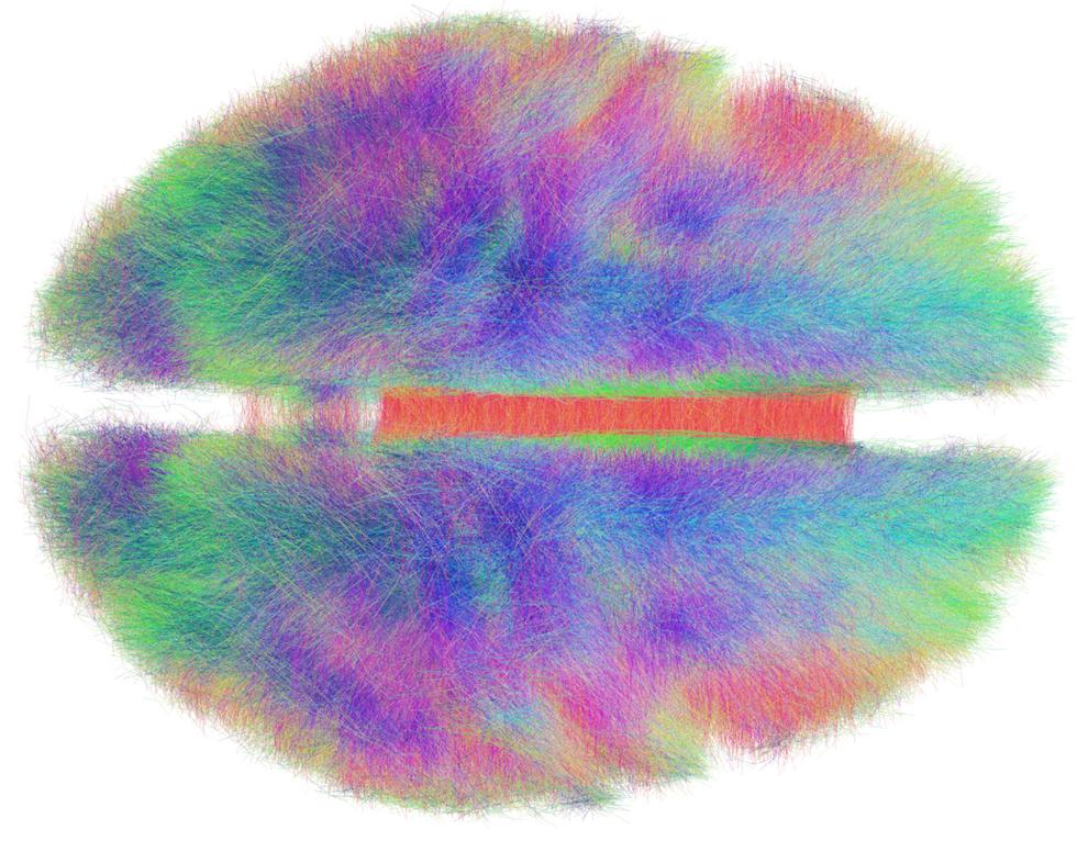 Neuroscience & Psychology - cover