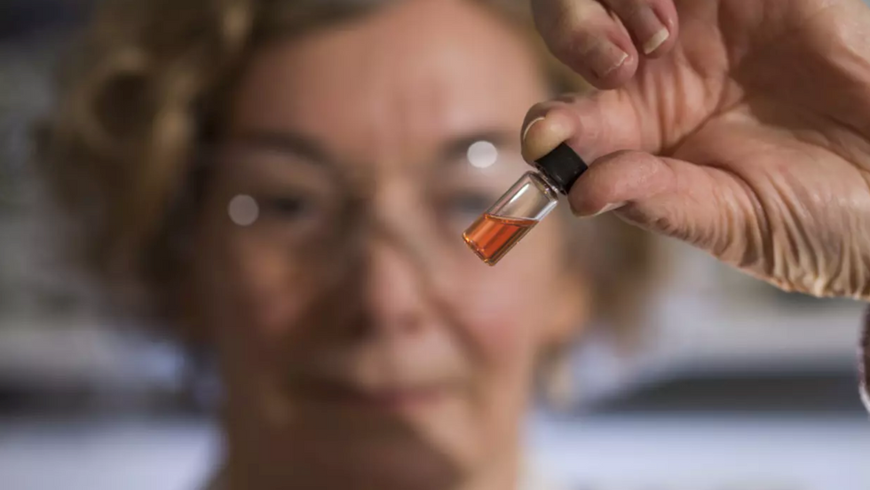 world's oldest color is hot pink bacteria