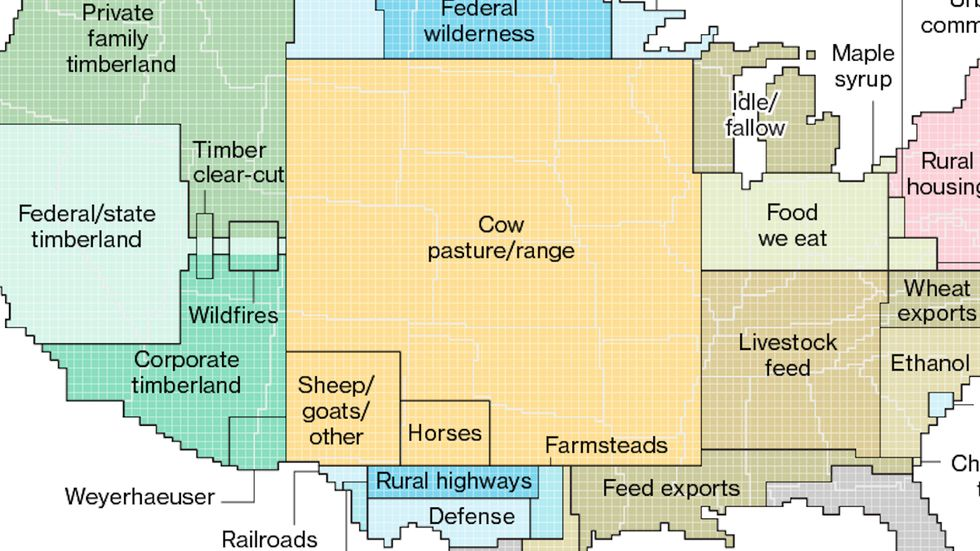 Urban areas take up less than 4% of the coterminous U.S., cattle-rearing gobbles up more than 40%