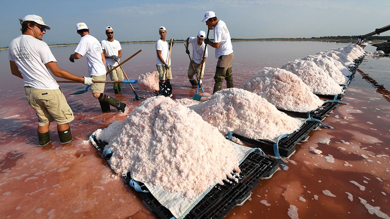 90% of Table Salt Is Contaminated With Microplastics