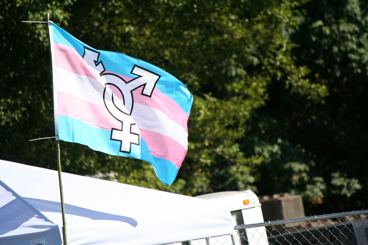 Here's How to Help Trans and Non-Binary People Right Now