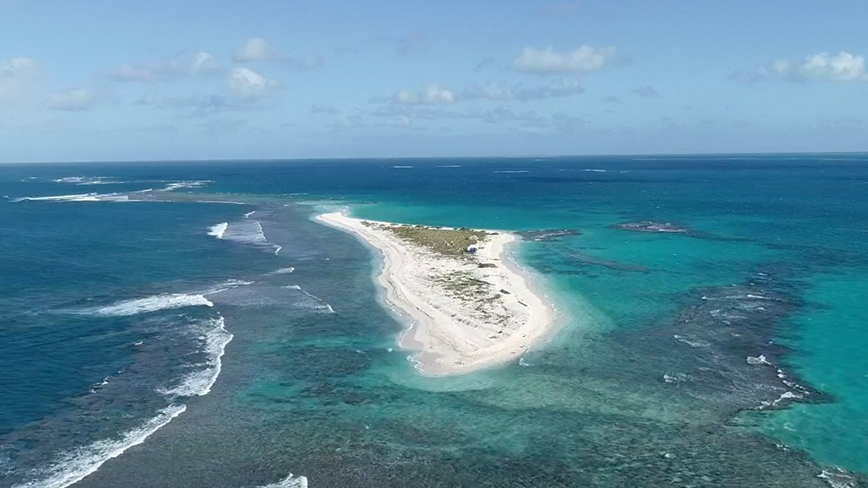 'Oh My God, It's Gone!' Hawaiian Island Important for Seals and Turtles Washed Away by Hurricane