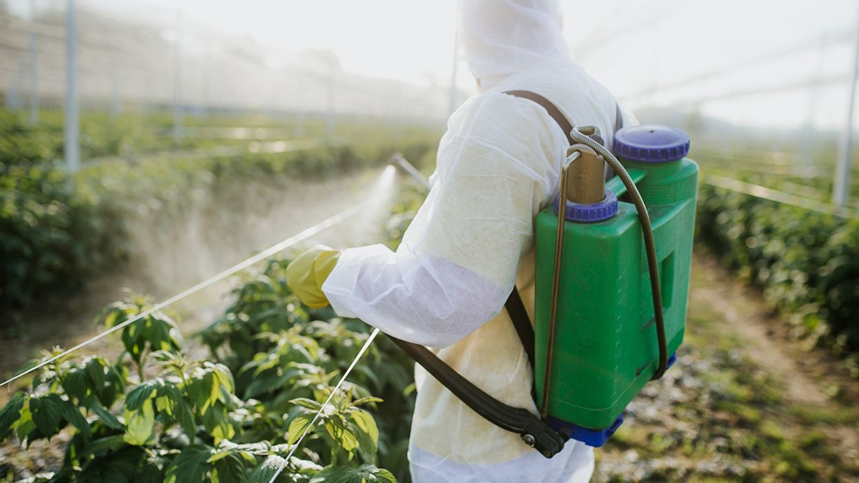 Entire Pesticide Class Must Be Banned to Save Children's Health, Landmark Study Says
