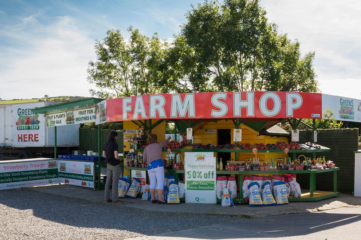 Eating Locally and in Season: Is It Really Better for the