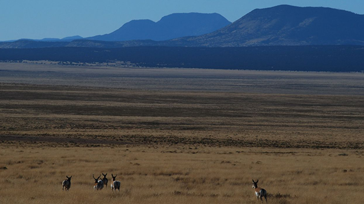 An Aquifer From the Ice Age Becomes a Battleground in New Mexico