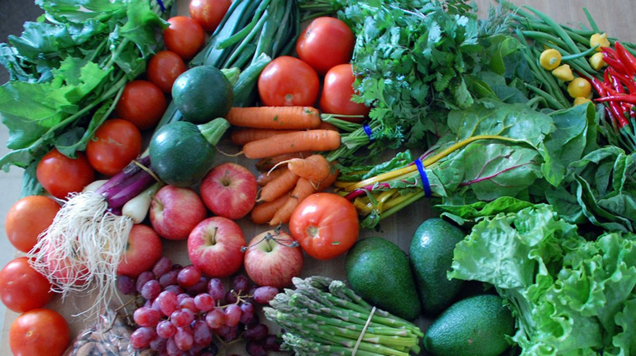 It's Time to Stop Paying for Pesticides With Our Health: Organic for All Must Become the Norm