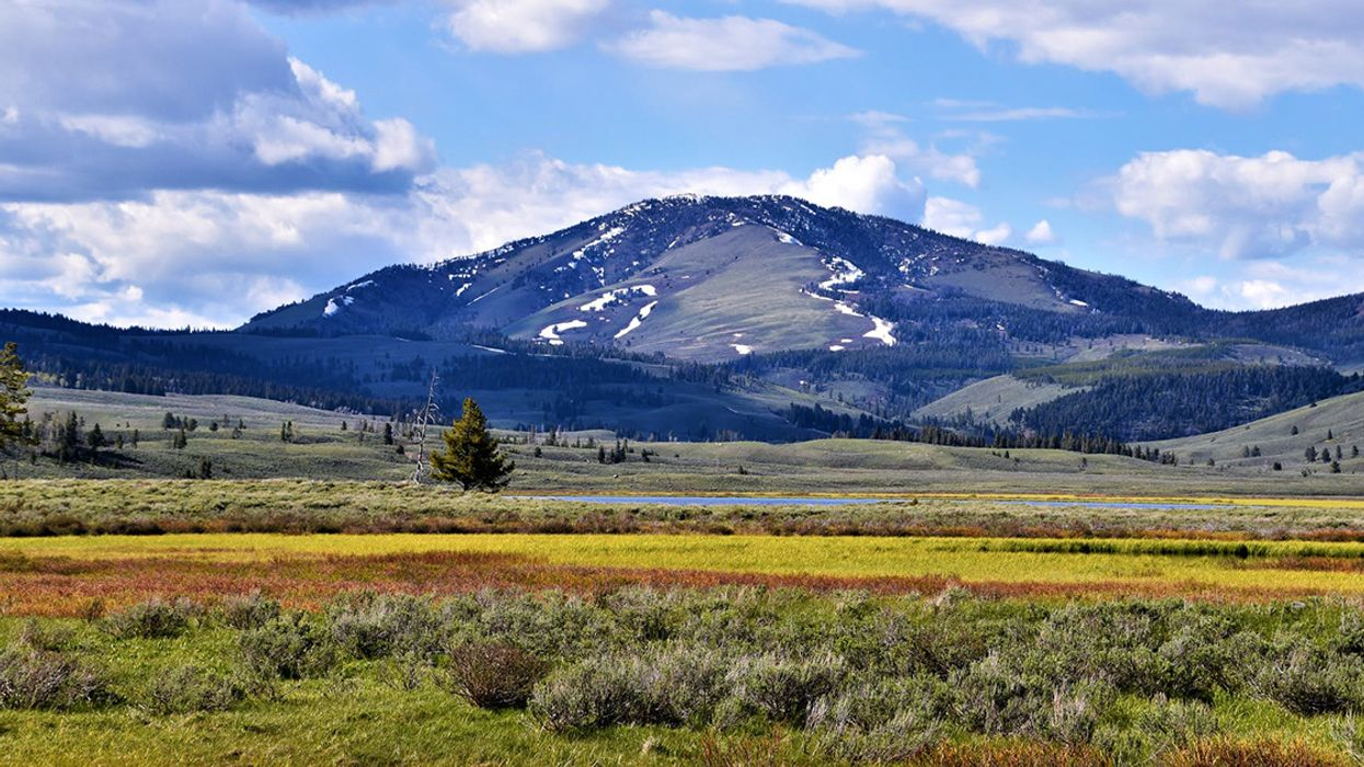 Zinke Extends Mining Ban Near Yellowstone, Protecting Land in Home State