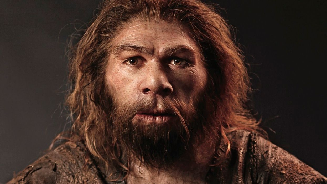 Sex with Neanderthals helped modern humans survive, says study