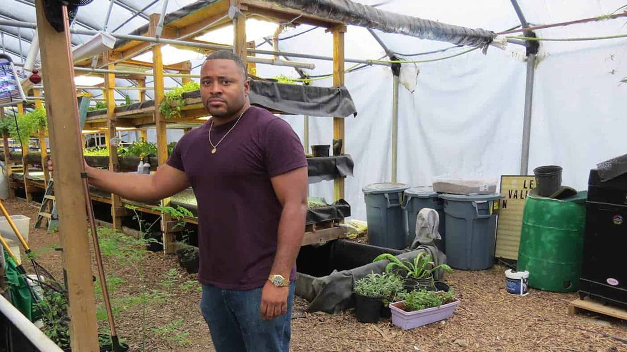 Urban Farming Organization Visualizes a Franchise Model to Produce Fresh Fish and Vegetables