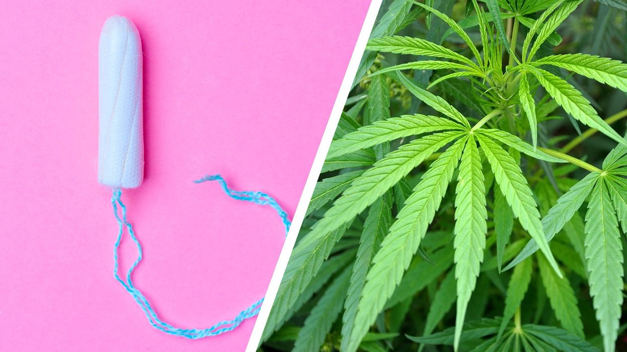 weed tampons or cannabis vaginal suppositories