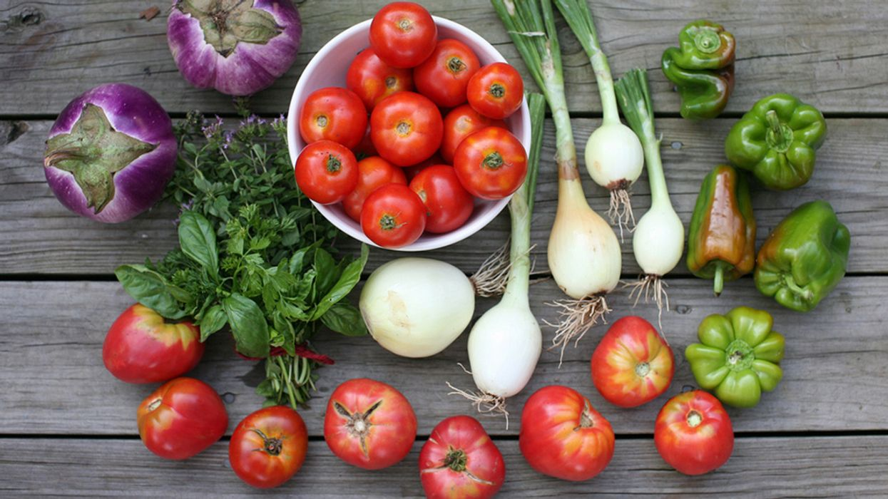 Organic Farming With Gene Editing: An Oxymoron or a Tool for Sustainable Agriculture?