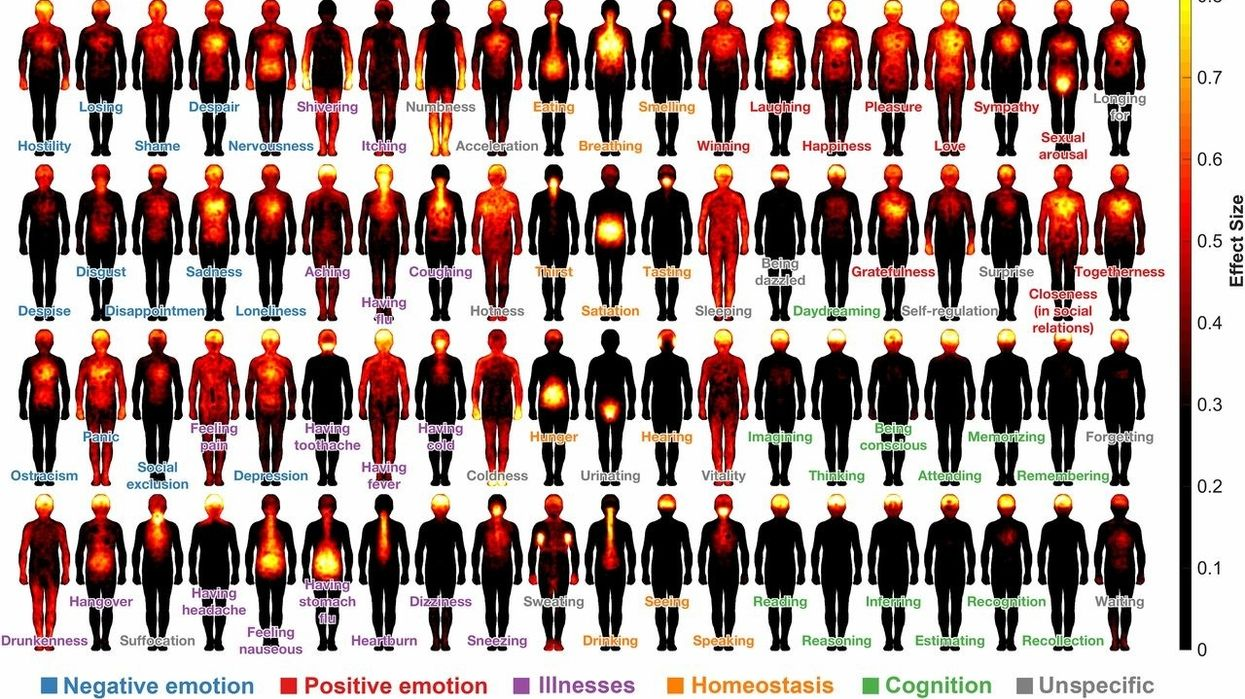 A cartography of consciousness – researchers map where subjective feelings are located in the body