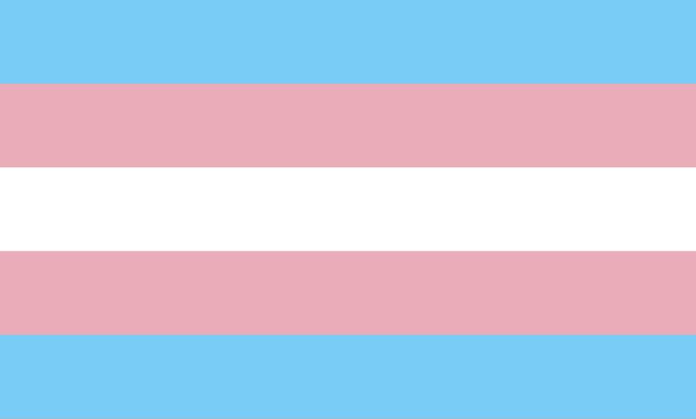 https://upload.wikimediaorg/wikipedia/commons/b/b0/Transgender_Pride_flag.svg
