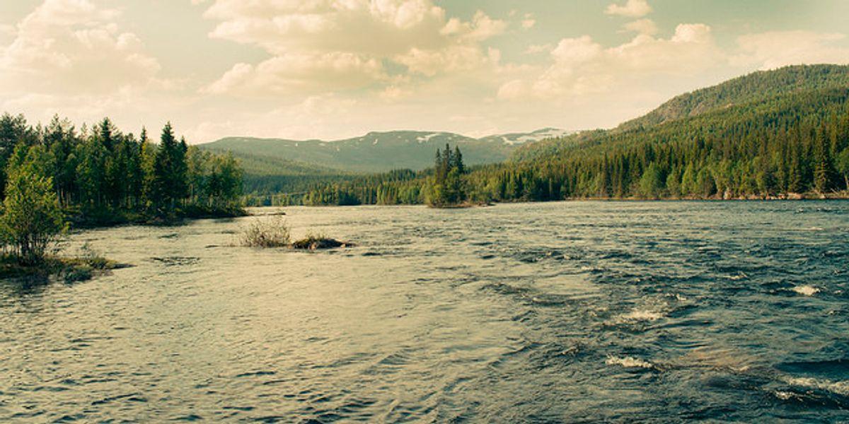 Last chance to save world's wilderness