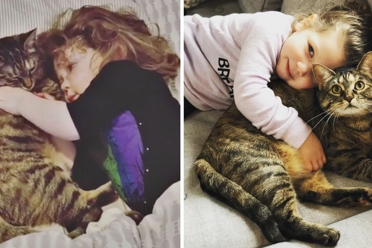 Kitten Falls In Love with Her New Sister and Guards Her Everywhere She Goes