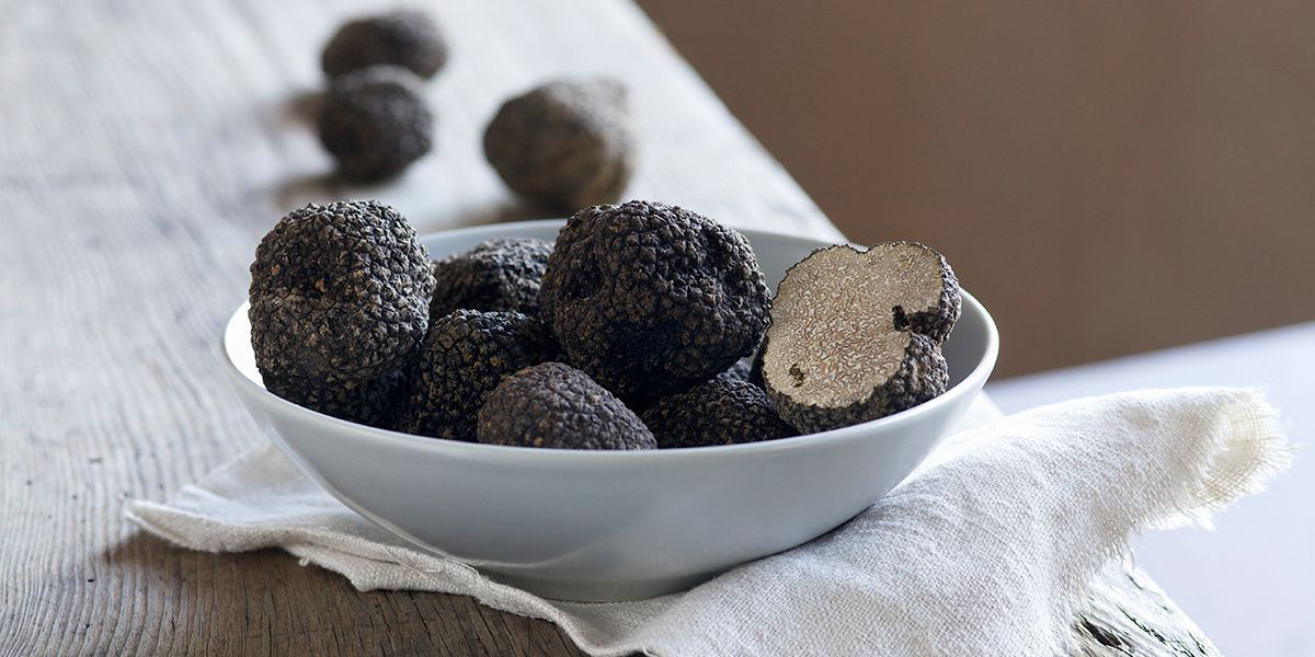 Black Truffles Imperiled by Climate Change