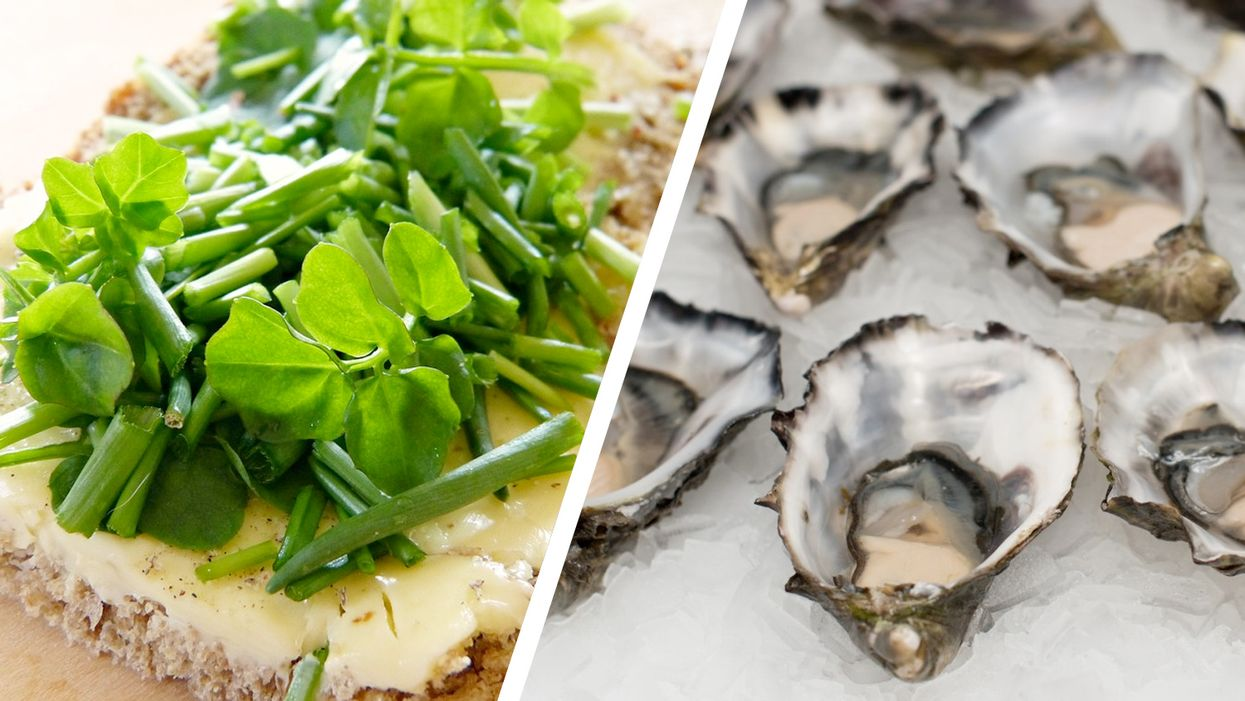 leafy greens and oysters