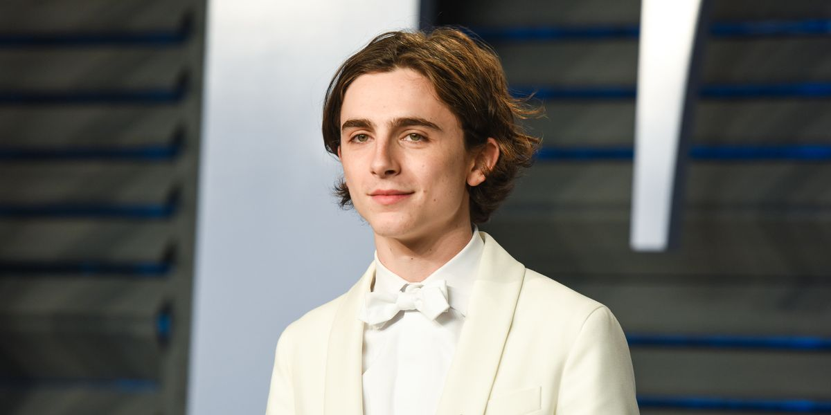 Of Course, Timothée Chalamet Will Star In Wes Anderson's Latest