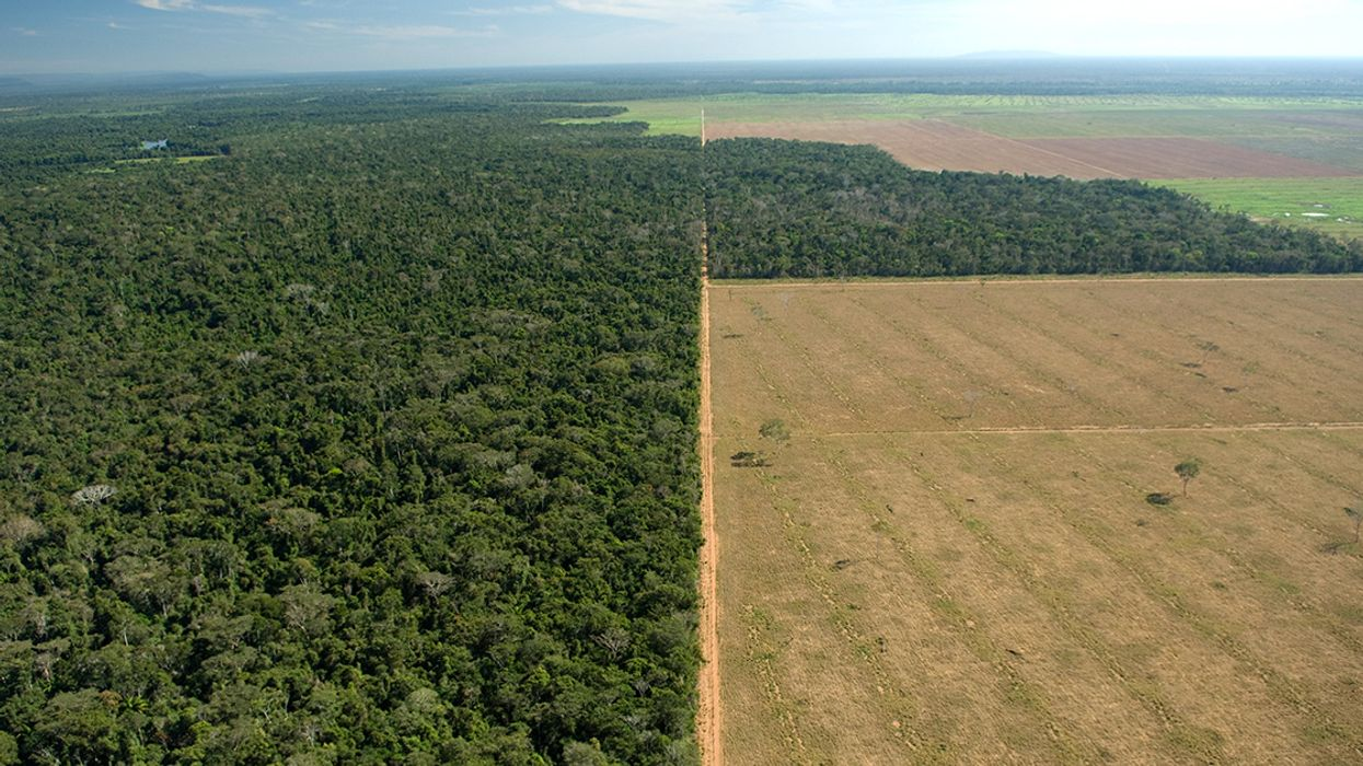 Brazil's New Environment Minister Is Bad News for the Amazon and the Climate