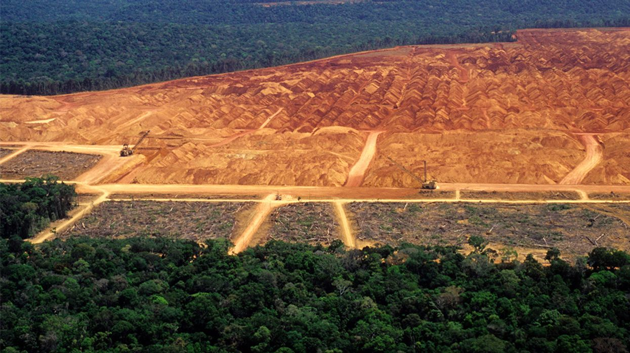 Amazon Rainforest Deforestation Hits Highest Rate in 10 Years