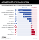 GRAPHIC TRUTH: SNAPSHOT OF POLARIZATION