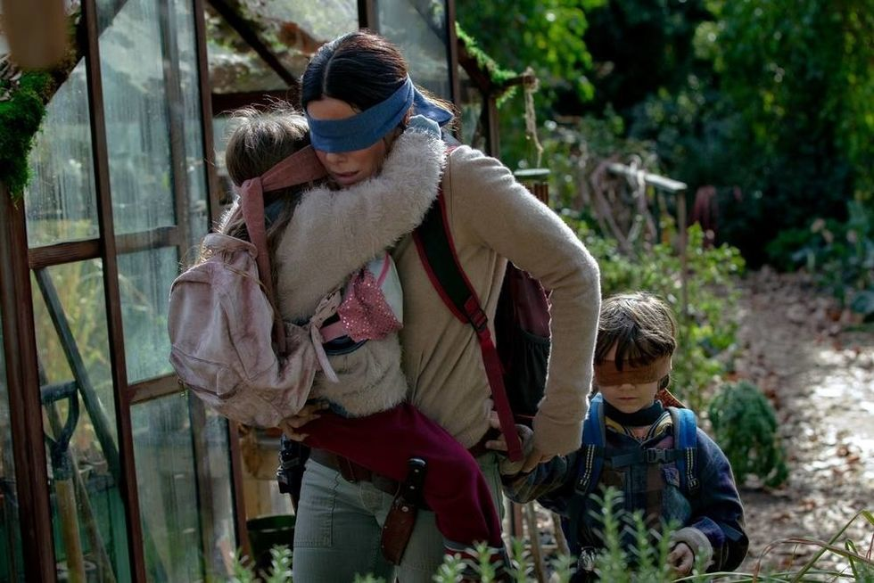 All Of The Questions I Have After Finishing 'Bird Box'