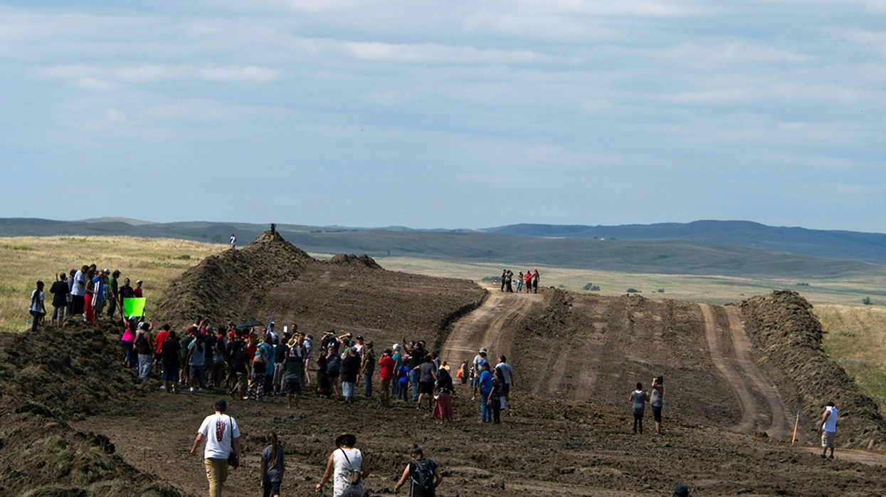 Dakota Access Pipeline Company Misses Deadline to Plant 20,000 Trees Along Pipeline Route