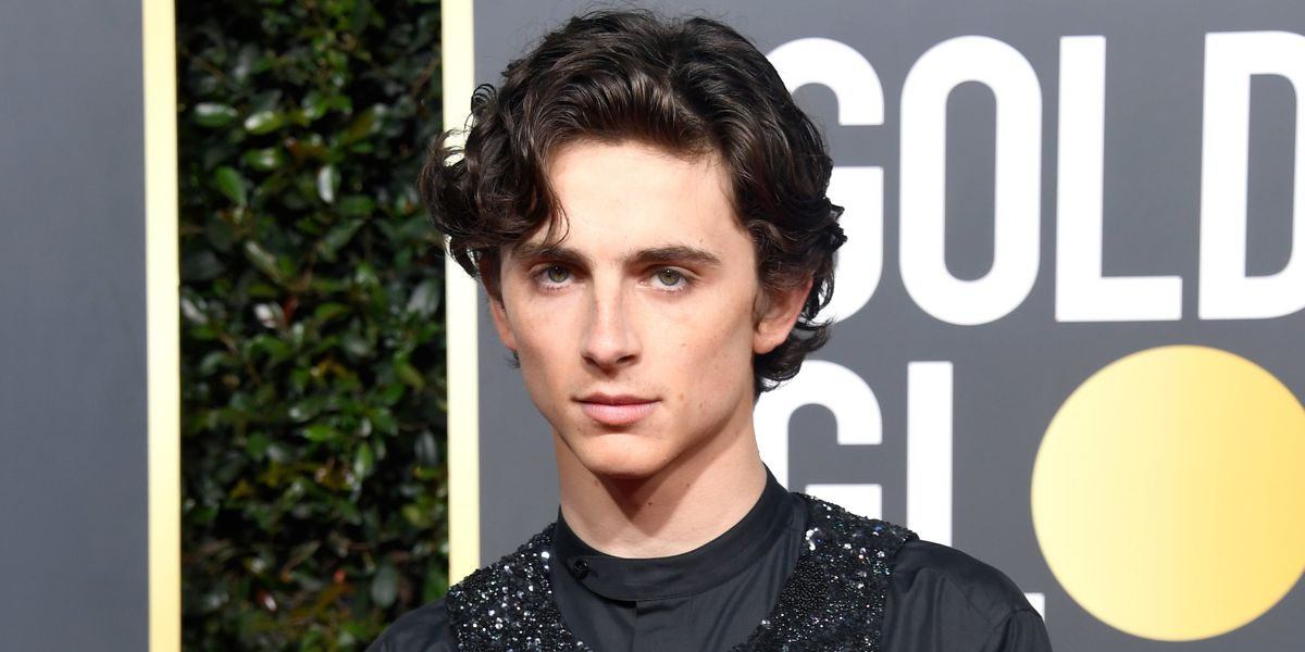 No One Can Agree On What Timothée Chalamet Wore to The Golden Globes
