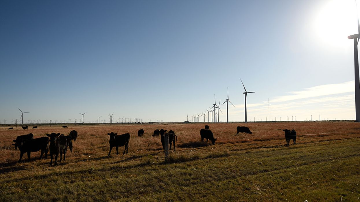Wind and Solar Are the Final Nails in Coal's Coffin