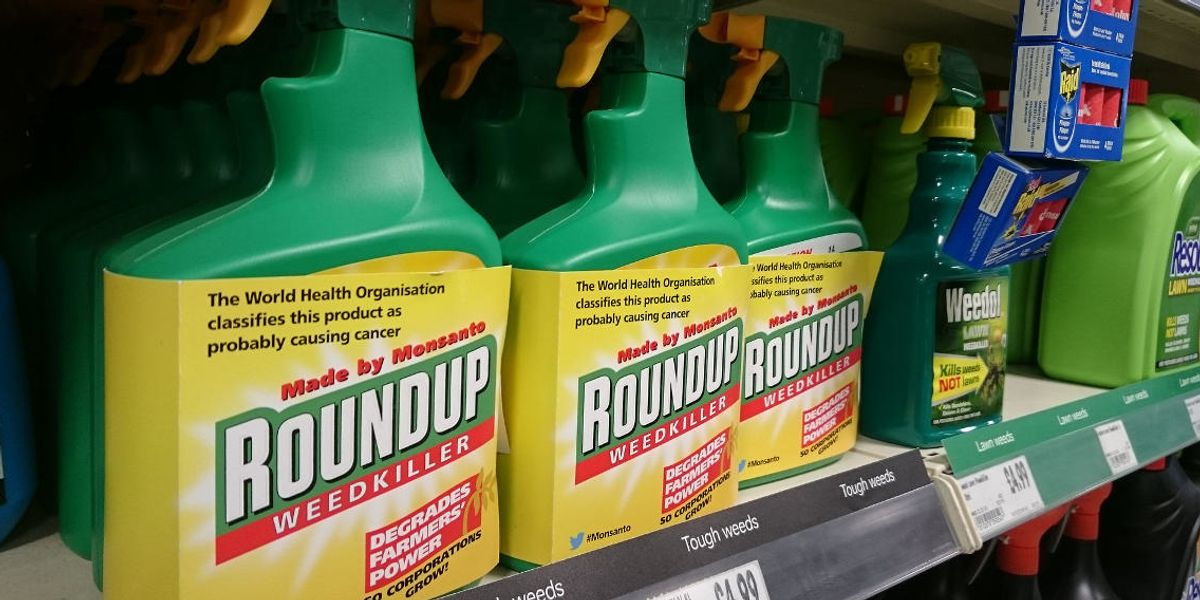 New analysis raises questions about EPA's classification on glyphosate weed killer