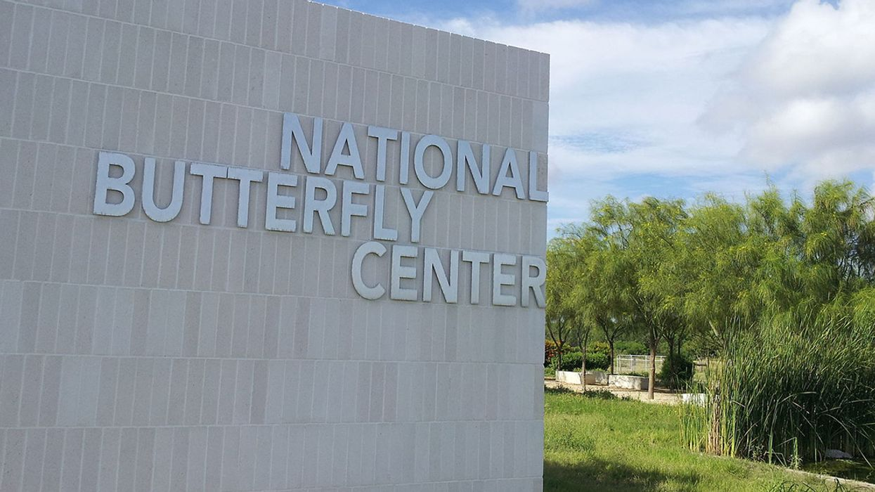 Most Diverse Butterfly Center in the U.S. to be Bulldozed for Trump's Border Wall