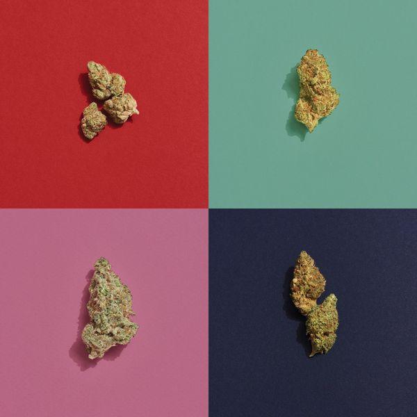 Top 5 Weed Strains