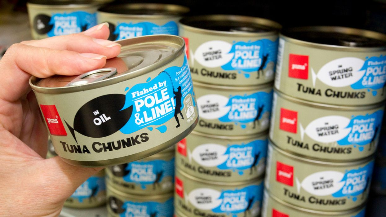 Attention Shoppers! 'Pole and Line' Is Today's Eco-Friendliest Canned Tuna Label