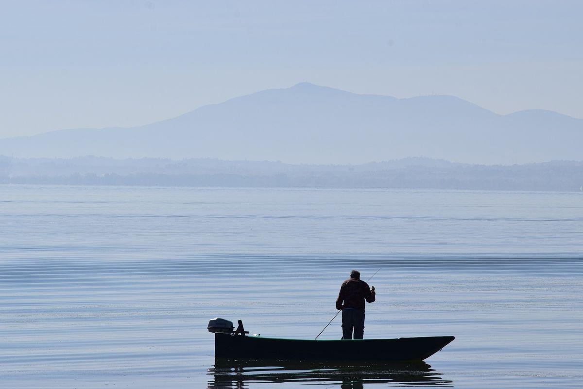 Un pesce fresco di lago spiega quale sia il rumore segreto del Natale