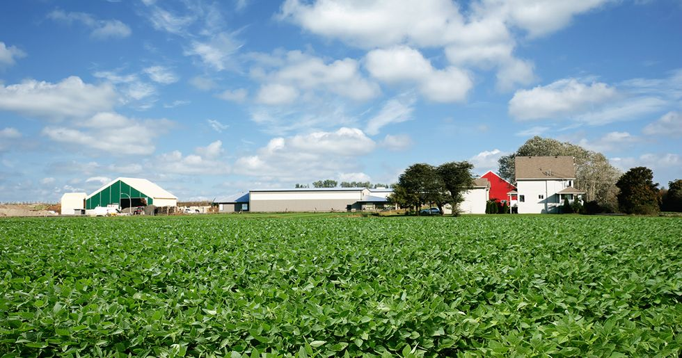 Midwestern Farming Is in Danger From Climate Change