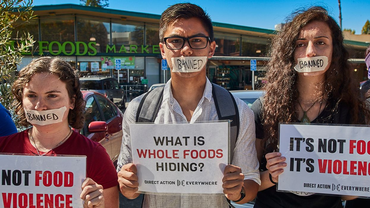 Is Whole Foods Telling Us the Truth About Its Stance on Animal Rights?
