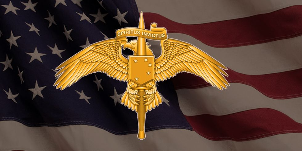 MARSOC's New Badge Should Be Replaced With One Of These 5