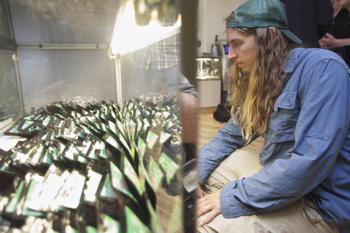 Giro di vite sui negozi di marijuana, confermato l'allarme della «Verità»