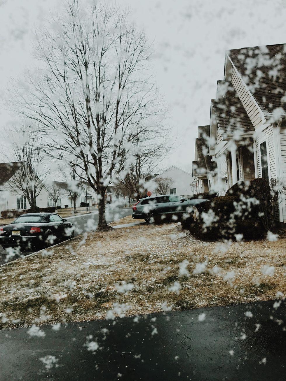 To The Longest Winter Break Ever