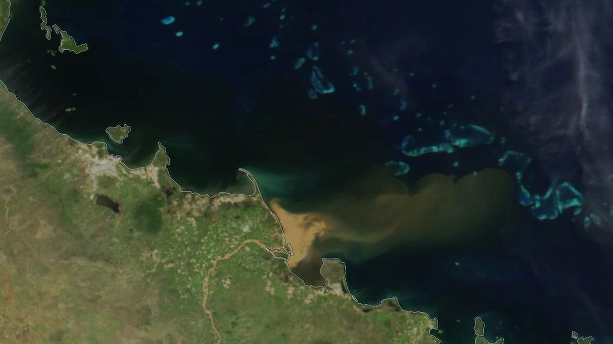 300 Miles of Great Barrier Reef Threatened by Muddy Runoff From Queensland Floods