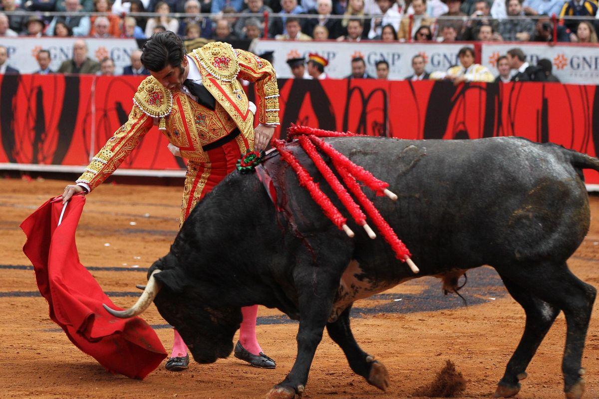La prima bufala è sui tori: non odiano il rosso