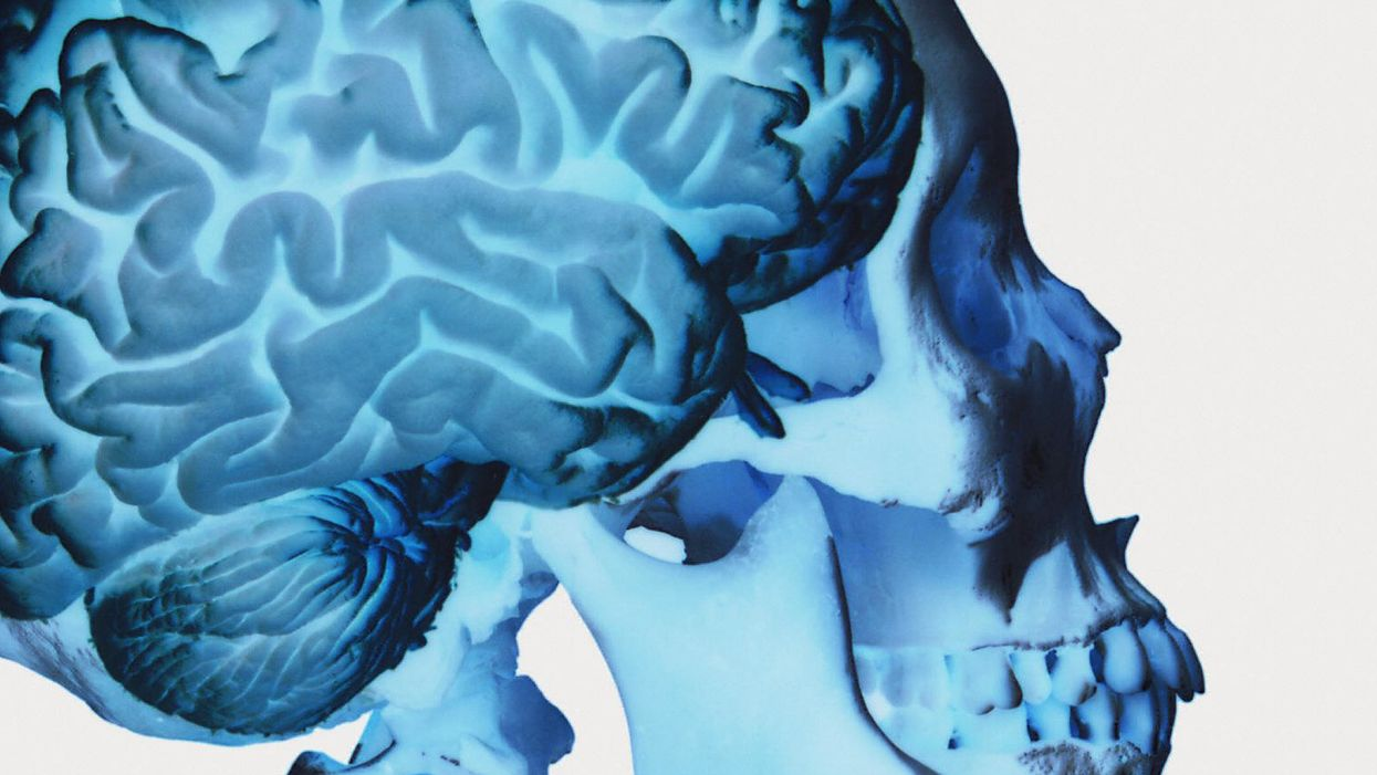 This nifty infographic is a great introduction to neuroplasticity