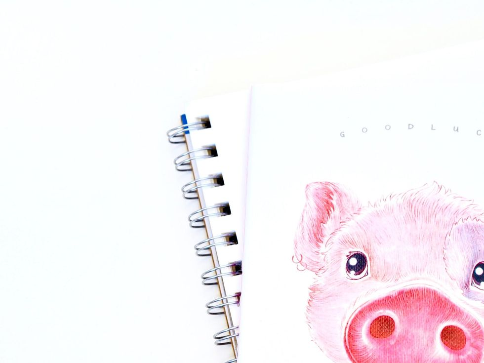 8 'Year Of The Pig' Exclusives Every Pig Lover Needs This Year